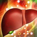 La fonction hépatique joue un rôle clé dans les protocoles de médecine fonctionnelle