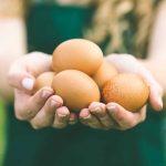 Trois œufs chaque matin éloigne le médecin!