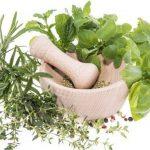 7 conseils naturopathies pour renforcer votre immunité